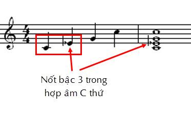 Hop am C thu.jpg